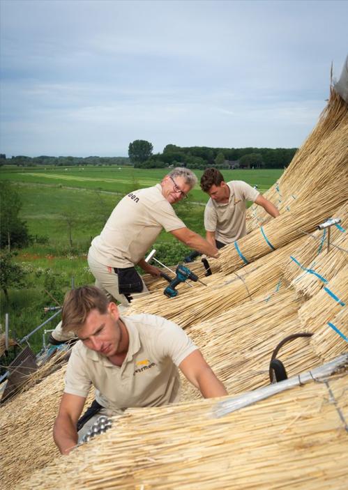 Bas, Getty & Gert-Jan Overmeen